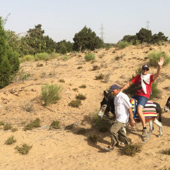 Balade dos Ane Essaouira Maroc - Equievasion