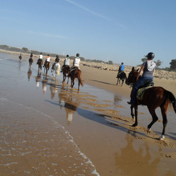 Excursion Rando Balade Cheval Essaouira Equievasion