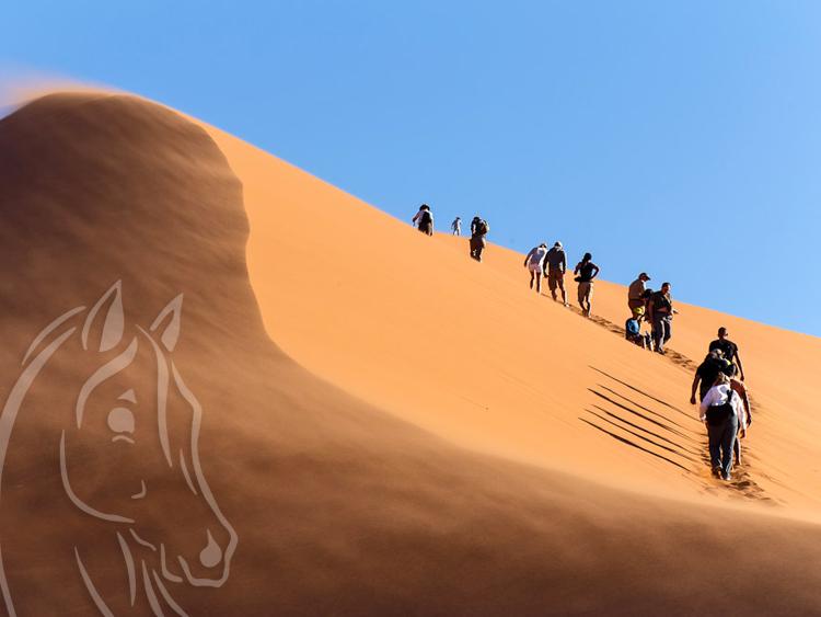 Randonnée à Pieds Essaouira Maroc
