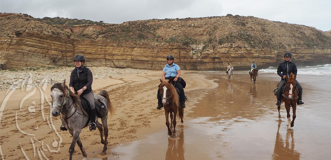 Randonnee Cheval Chevauchee Atlantique Essaouira Maroc Equievasion