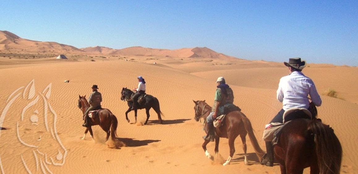 Randonnee Cheval Circuit Desert Valee Draa Maroc Equievasion
