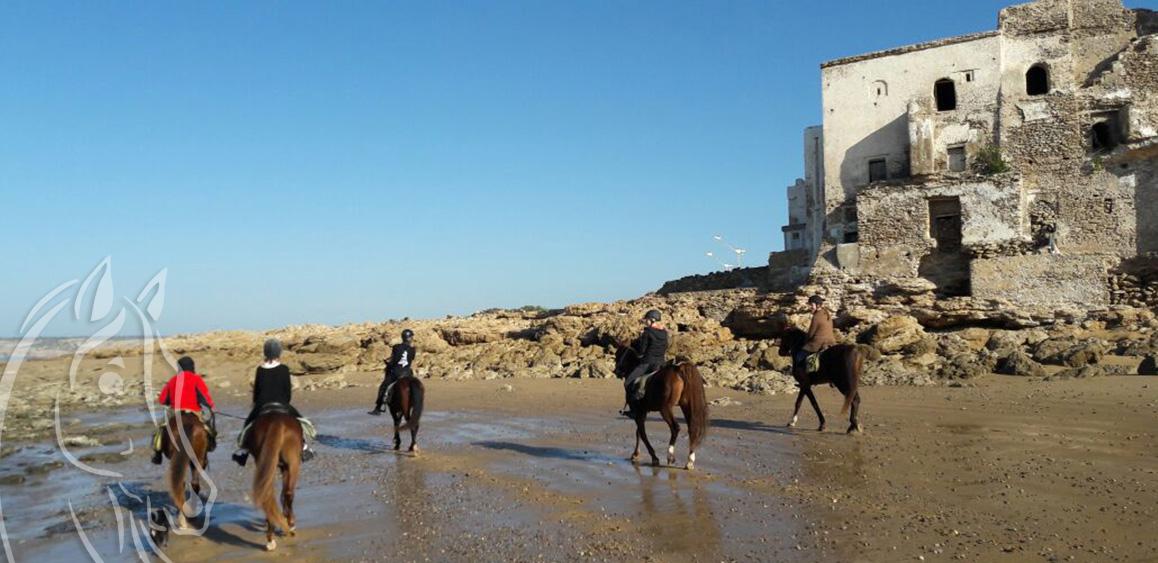 Randonnee Cheval Sidi Kaouki Essaouira Maroc - Equievasion
